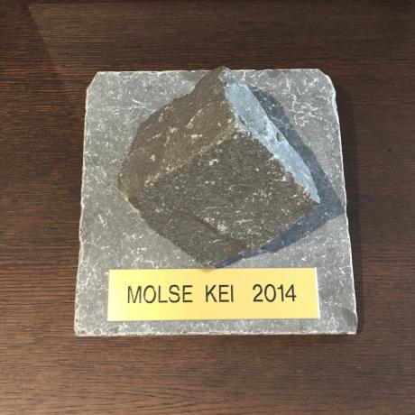FJA-OEYEN WINT MOLSE KEI 2014